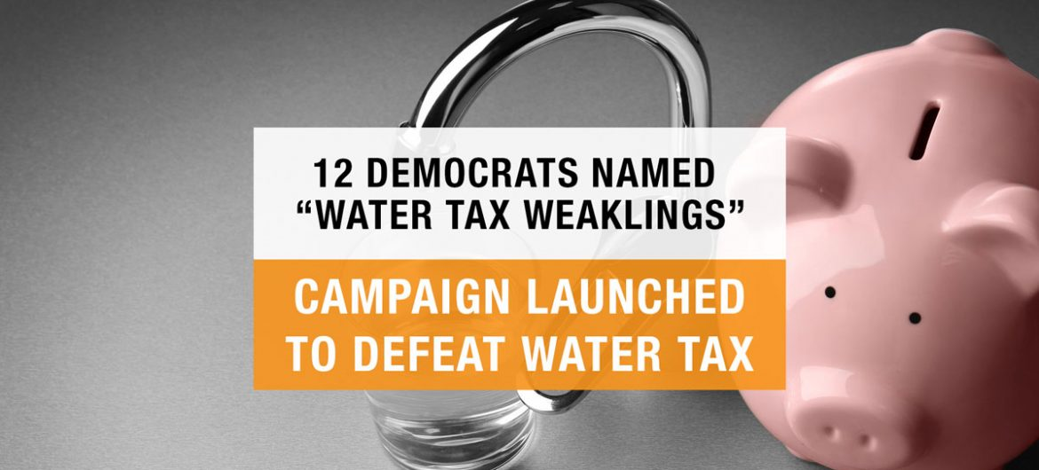 12 Democrat Legislators Named Targets of Campaign to Defeat the Water Tax